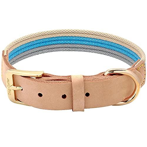 LSHMSN Collar De Perro De Cuero Suave, Cinturón De Tela De Poliéster Collar De Mascotas para Perros Medianos Grandes Bulldog Francés Pitbull Collar De Labrador,Blau,34~41cm