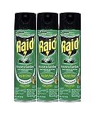Raid House Garden Bug Killer, 11 OZ (3)