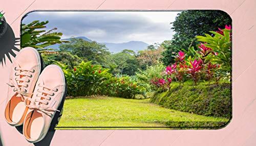 DIIRCYB Fu?Matte Indoor Outdoor rutschfeste waschbare Fu?Matte,Beautiful Tropical Garden,DIY Cropping Teppich,F¨¹r Hauptk¨¹Che Schlafzimmer Badezimmerboden Carpet17.5' X 29.5'