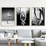 APAZSH Posters para Pared Póster de Bailarina de Ballet Cuadros de Lienzo más Blanco y Negro Pinturas nórdicas Arte de Pared Fresco para el hogar Decoracion para Salon de estar40x60cm x3 Sin Marco