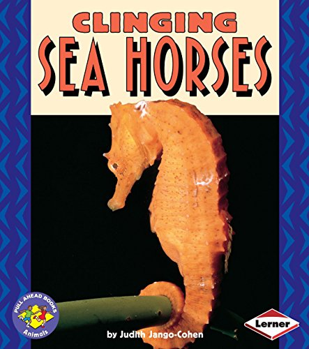 Clinging Sea Horses (Pull Ahead Books ― Animals)