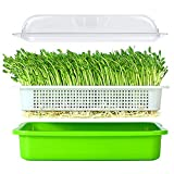 BIGHAVE Seed Sprouter Tray with Lid BPA Free Bean Sprout Grower Germination Kit Wheatgrass Grower