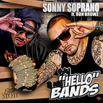 Say Hello 2 My Bands (feat. Ron Browz)