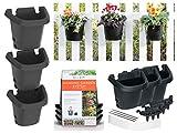 bloem 482124-1001 Hanging Garden Planter System, Black (Pack of 3)