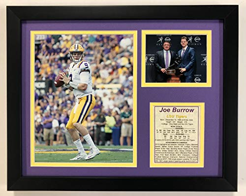 University of Louisana State LSU Tigers NCAA Framed Photograph Milestone Collage