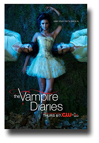 The Vampire Diaries Poster TV Show Promo 11 x 17 inches Damon Floating