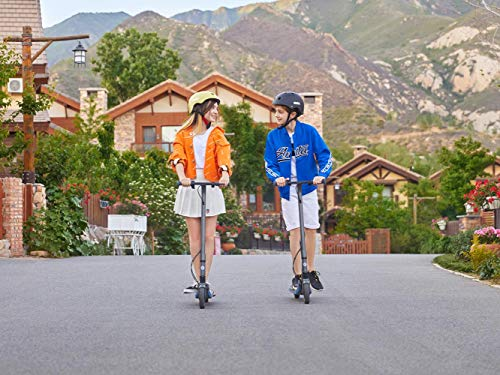 Segway Ninebot eKickScooter ZING E10 Electric Kick Scooter for Kids and Teens, Lightweight and Foldable, New Cruise Mode, Dark Grey
