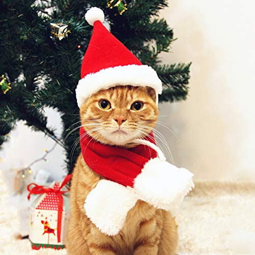 PETLESO Cat Santa Hat with Scarf -Christmas Costume Set Puppy Dog Cat Santa Hat, Red S