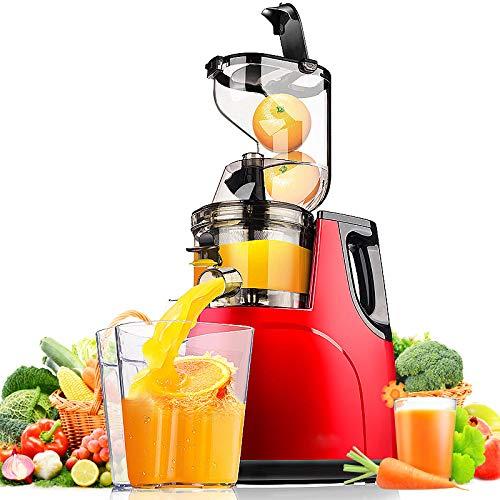 HEAOJ Presse-Agrumes Machine À Jus D'Orange ÀFaible Vitesse (55 Rev/Min) Extrudeuse Jus Juicer Jus Machine...
