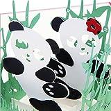 S-TROUBLE Panda Symbol Frieden 3D Pop Up Karte Freundschaft Kindertag Alles Gute zum Geburtstag Ostern