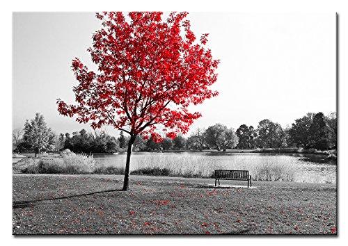 Berger Designs - Wandbild auf Leinwand als Kunstdruck in verschiedenen Größen. Schwarz Weiss Naturbild mit rote Blätter Kontrast. Beste Qualität aus Deutschland (120 x 80 cm BxH)