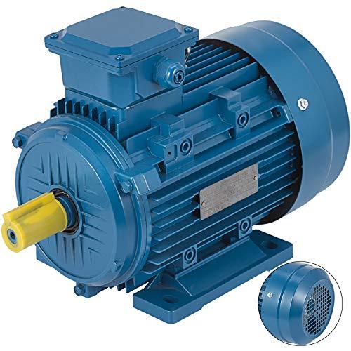 OldFe 400V Wechselstrommotor Elektro Motor 3000 U Asynchronmotor Wechselstrommotor 3 Phase Drehstrommotor Motor