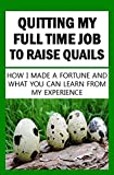 Quitting My Full Time Job To Raise Quails:...