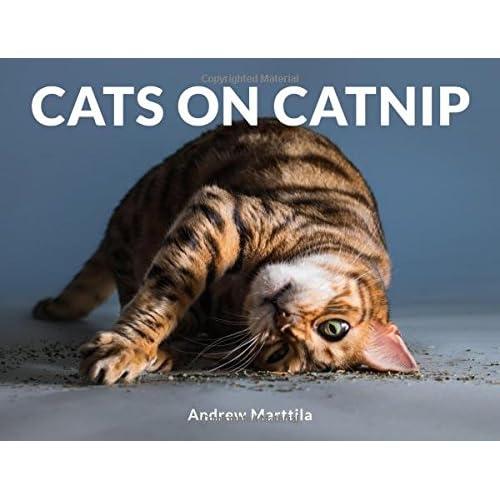 Amazon.com Cats on Catnip (9780762463671) Andrew Marttila