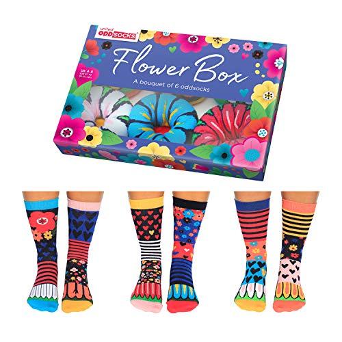 United Oddsocks - Calzini da donna, con scatola di fiori, 6 Oddsocks UK 4-8