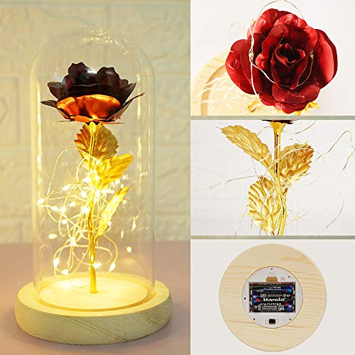 Rot Rose mit Glas Lampenschirm, TINYOUTH Rose Kunstseide Sparkle Rose, 2m/6.6ft 20 LED Streifen Licht Rose im Glas Schöne und Das Biest, AAA Batteriebetrieben für Hochzeit Valentinstag Weihnachten