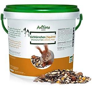 AniForte Squirrel Food Mix 1kg - Pure Natural Feed for Squirrels, Chipmunks & Wild Birds, Sunflower Seeds, Hazelnuts, Rosehips, Cedar nuts, Raisins