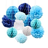 CattleyaHQ 12 Pezzi di Palla di Fiori di Pompon di Carta, Palle di favo di Tessuto, Bella Decorazione per Matrimoni, Feste, Baby roomste, Baby Room (Blue)