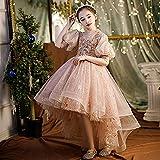SUNXC Rapunzel Vestidos de Princesa, Disfraz de Gasa esponjosa con Falda de Princesa-C_140cm,Cosplay Carnaval Vestido de Princesa