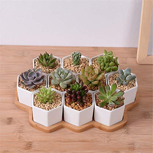 Céramique Pot à fleurs avec plateau en bambou Décoration de jardinière