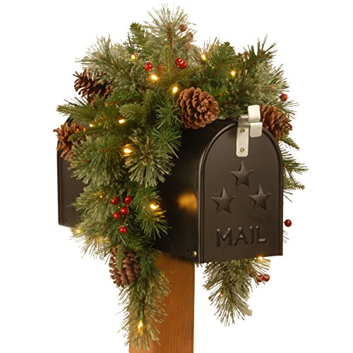 National Tree Company Pre-lit Artificial Christmas Mail Box Swag Flocked with Mixed Decorations and White LED Lights Colonial-36 Inch