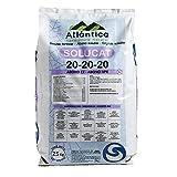 ATLANTICA AGRICOLA Abono Cristalino Soluble NPK SOLUCAT 20-20-20 Especial Frutales, Hortícolas, Cultivos Extensivos, Ornamentales y Viveros, 25 kg
