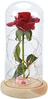 وردة حمراء في قبة زجاجية على قاعدة خشبية للهدايا من بيوتي آند ذا بيست