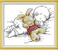 HMTTKPROクロスステッチ絵画漫画眠っている赤ちゃんの針仕事壁の装飾クロスステッチキット針仕事針仕事セットキャンバス絵画-11CTパターン印刷、16x20インチ