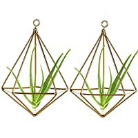 LouisaYork - Soporte para Plantas de Aire para Colgar en la Pared, diseño geométrico Creativo para Plantas de imitación y más Oro, Dorado, 2 Unidades