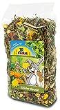 Jr Farm Mix de hierbas especiales para roedores