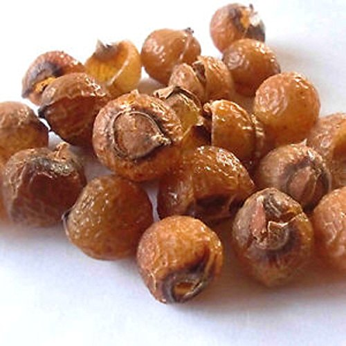 REETHA ARITHA PODS 100gms Soap Nuts Sapindus *Whole*