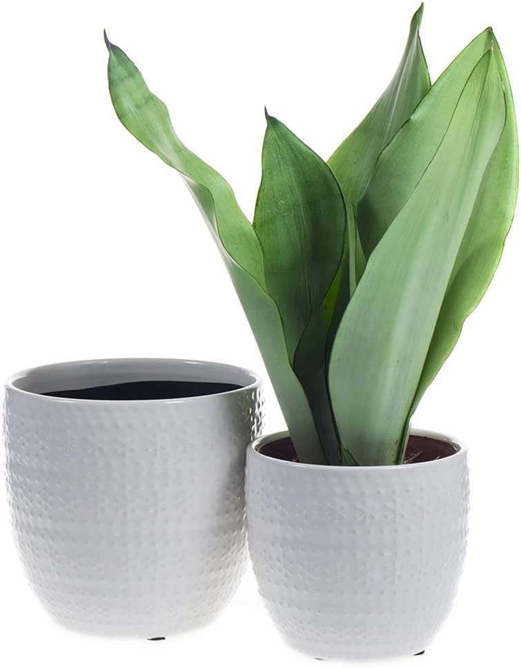 Ocbewua 4.5 and 5.5 Inch Ceramic Pot Flower with a trend rank Drainage Hole Be super welcome