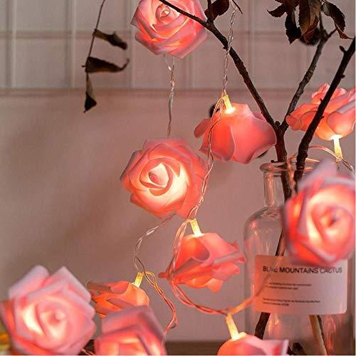WEDFGX Guirnalda Cadena de Flores Luces de Hadas USB Luces de Hadas con Pilas Boda de Navidad Decoración de San Valentín