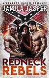 Redneck Rebels: A WMBW Reverse Harem Romance (Redneck Rebels Trilogy Book 1)