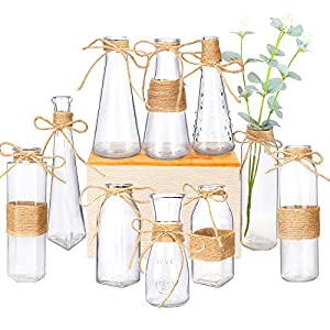 Nilos Glass Vases Set of 10, Clear Glass Flower Vase with Rope Design and Differing Unique Shapes for Home Decoration