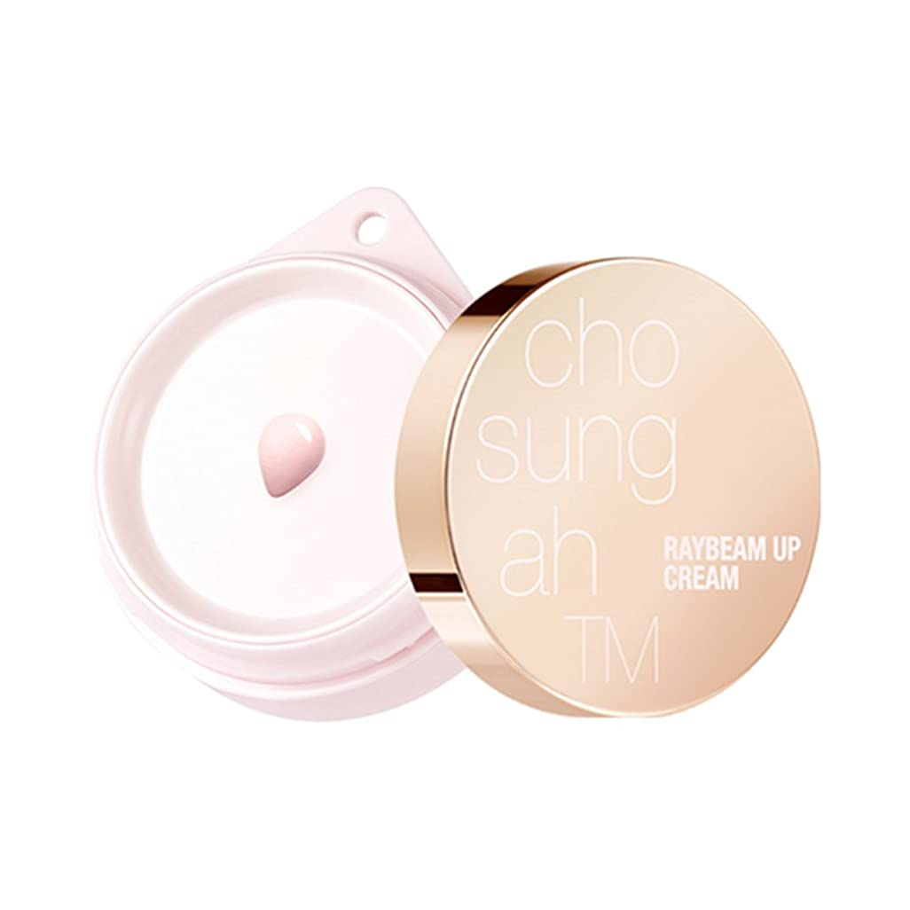 鳴らす酒完了(ジョソンア) Chosungah Raybeam Up Cream Season 2 SPF30/PA++ 14ml (14ml) [並行輸入品]