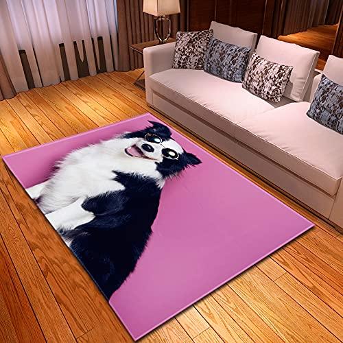 XuJinzisa Alfombra De Impresión 3D para Perros Y Mascotas, Alfombra Suave Antideslizante para Habitación De Niños, Sala De Estar, Dormitorio, Alfombra Decorativa para El Hogar, 180X260Cm H11722