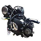Engine Motor 125CC 4 Stroke Engine Kit Electric Starter Semi-Auto Transmission with Reverse CDI Single Cylinder Air Cooling System Engine Motor for ATV Go Kart Mini Bike