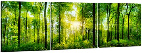 Forest Canvas Wall Art Decor - 3 Panel Tree Filled Print Photograph, Large Decorative Painting Wall Art for Living Room, Kitchen, Bedroom, Office, Modern Home Decor, Gift for Men & Women 24