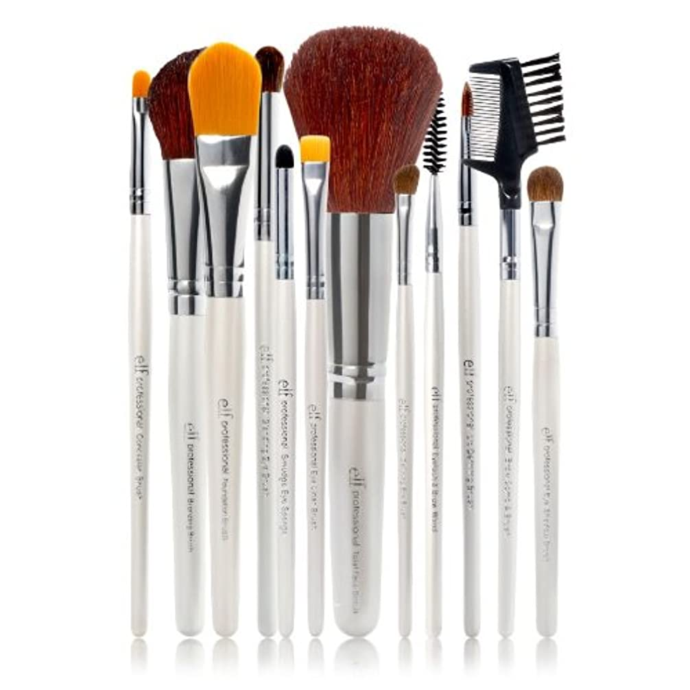 多様な芸術運営E.L.F. Cosmetics, Essential Professional Complete Brush Set, 12 Brushes