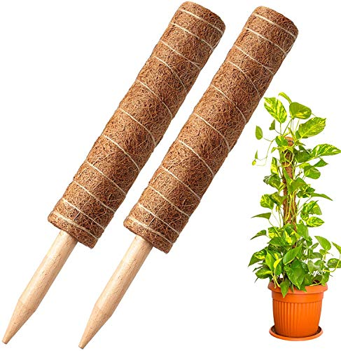 24 Inches Coir Totem Pole , 2 Coir Moss Totem Pole & Stick for Bonsai & Landscape Plant Support Extension ,for Monstera Deliciosa, Pothos and Other Indoor Climbing Creepers Plants to Grow Upwards