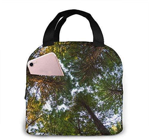 Árboles Bosque Naturaleza Nido de pájaros Bolsa de almuerzo Bolsa de almuerzo con aislamiento Bolsa reutilizable Bolsa de almuerzo