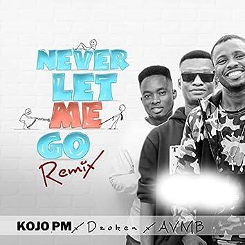 Never Let Me Go (Remix)