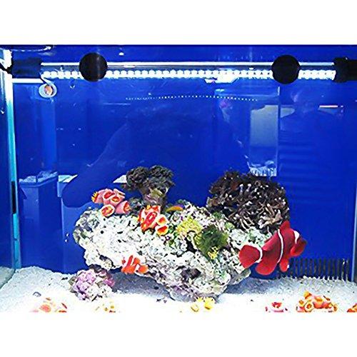 G-Lighting® Aquarium LED Beleuchtung Leuchte Lampe 57 LEDs 4W 48CM Lighting für Fisch Tank, EU Stecker Weiß Wasserdicht