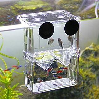 Kicode 少年孵化場ボックス 魚の繁殖 インキュベータ 分離 吊るす タンク ブリーダー