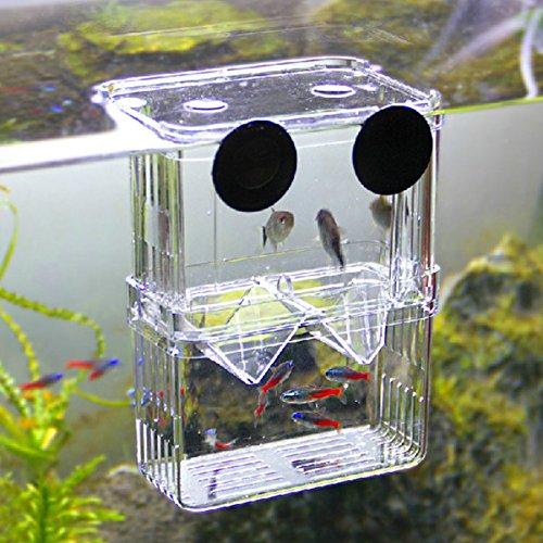 Rosepoem Caja de cría de Peces de Acuario Caja de incubación de Peces jóvenes Incubadora Incubadora Caja de Aislamiento Tanque para criadero de Peces, L