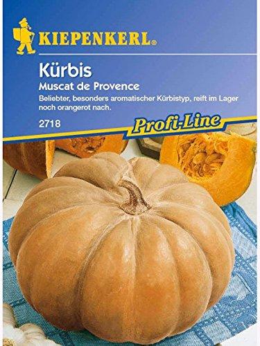 Kiepenkerl Kürbis Muscat De Provence