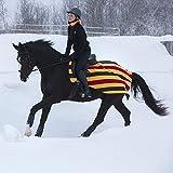 Horseware Rambo Newmarket Competition Fleece - Ausreitdecke M Witney Stripes - Gold