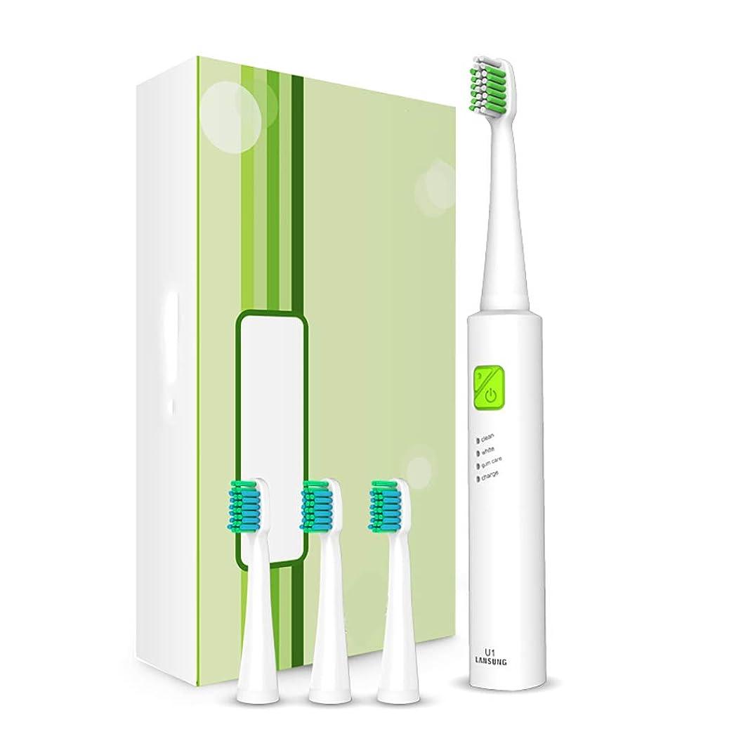 電動歯ブラシ、スマートタイマー付き超音波歯ブラシを充電する大人の子供たちUSB 4時間充電3オプションモード3つのブラシヘッド付きトラベル歯ブラシ,Avocado