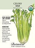 Organic Utah Celery...image